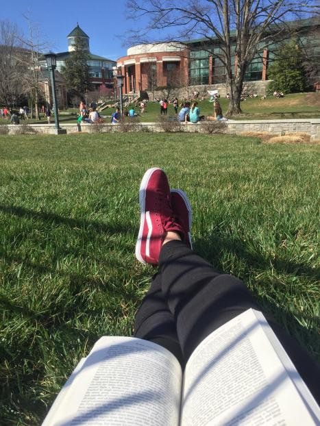 knees reading